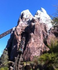 Expedition Everest (3)